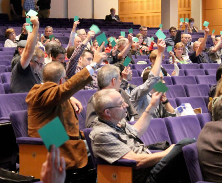 Delegates used green or red cards to register their votes at Gathering 2014. Photo: Laura Kalmar