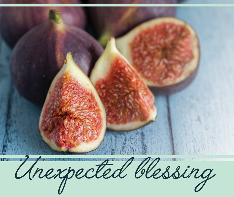 unexpected-blessing-2